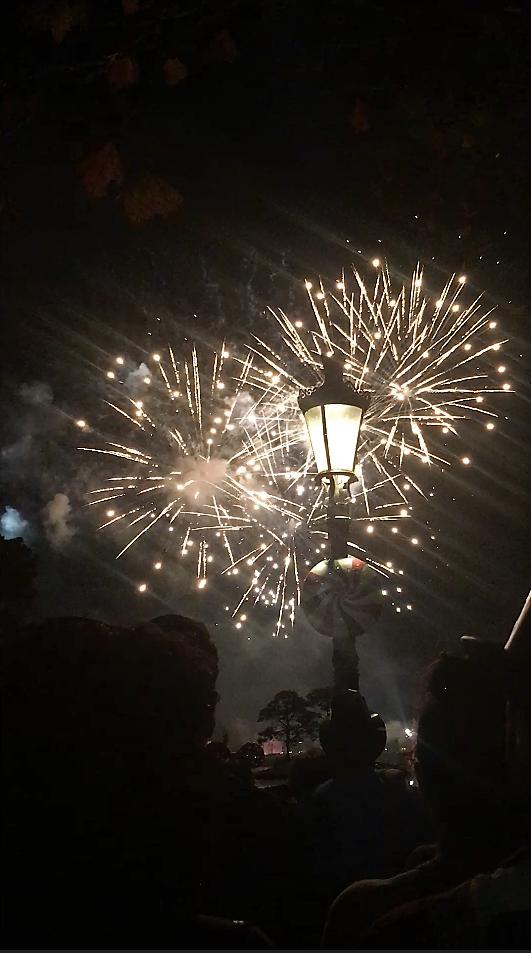 epcot; new years; new years eve; orlando; fireworks; midnight